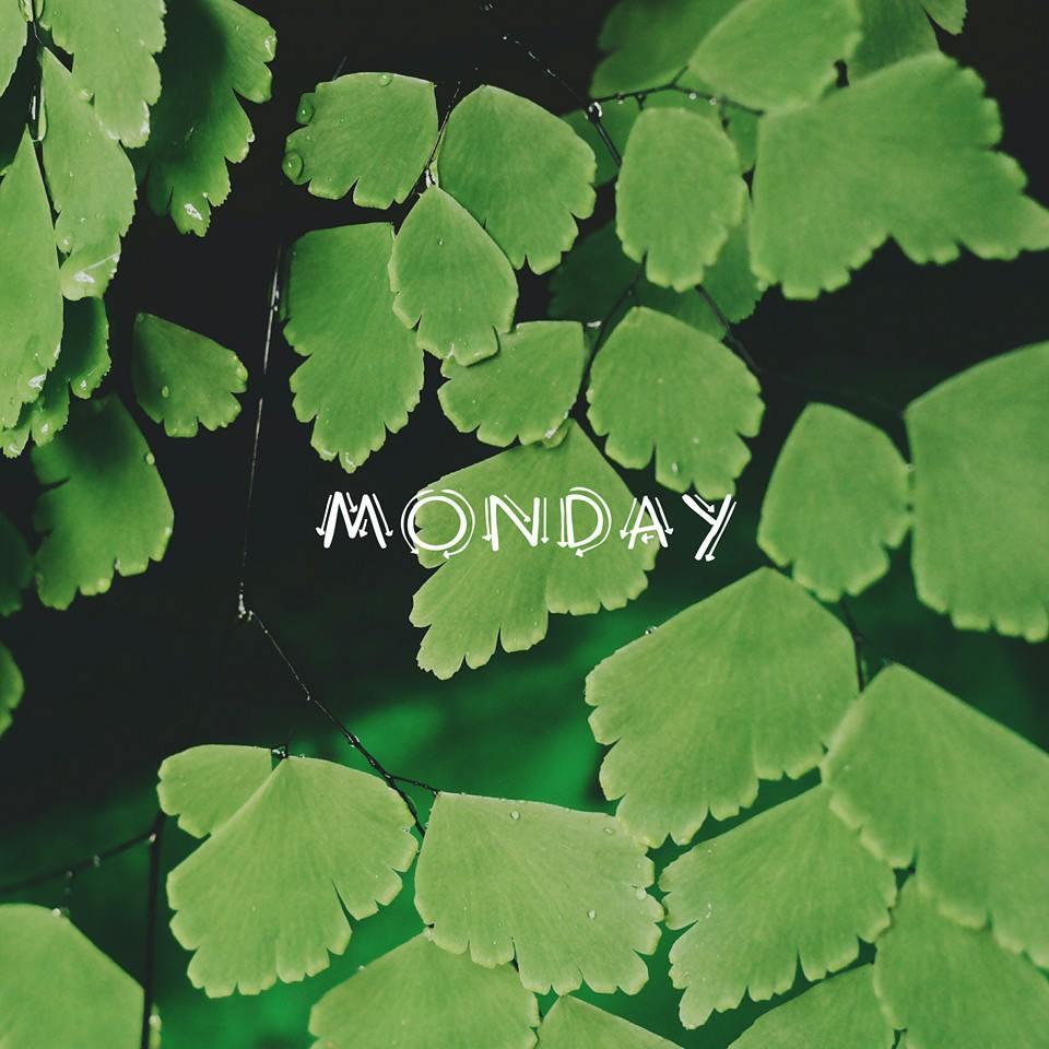 Monday by Nico Wijaya
