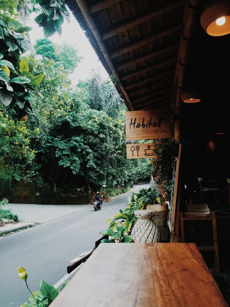 morning coffee in ubud